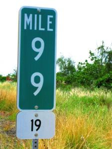 Mile99_Highway19_Big_Island_Hawaii