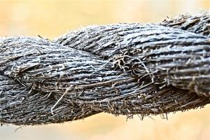 "Ecc. 4:12: ""A Threefold Cord is not easily broken."""