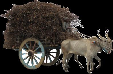cart-964388_1280.png