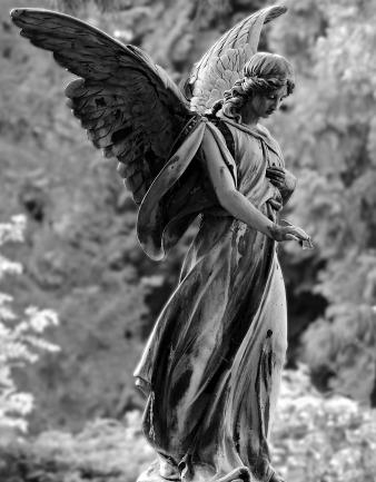 angel-2403401_1280.jpg